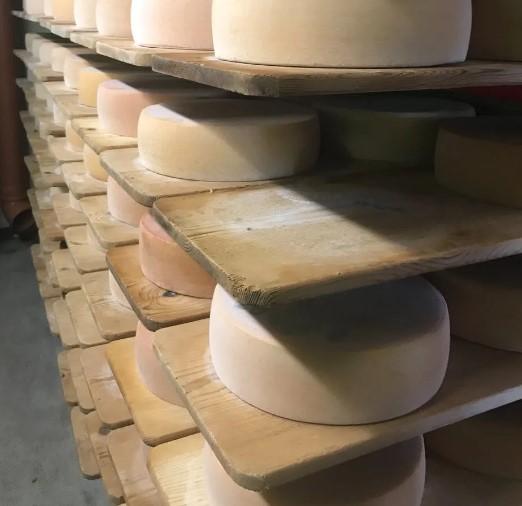 Увлажнитель воздуха для камеры дозревания сыра