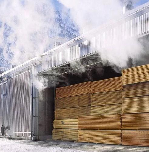 Парогенератор для пропарки древесины