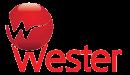 Запчасть Wester Мембрана (проходная) для баков 200 л с горловиной  диаметром 159 мм