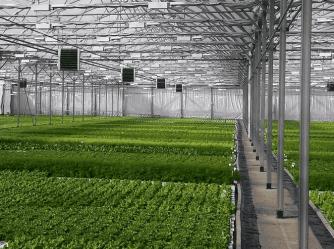 Тепловое и климатическое оборудование для овощеводства и грибоводства